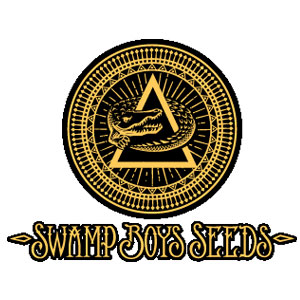 Swamp Boys Seeds