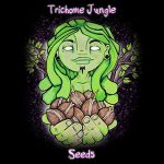 Trichome Jungle Seeds