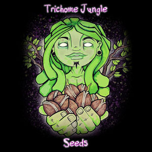 Trichome Jungle Seeds