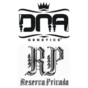 DNA Genetics / Reserva Privada