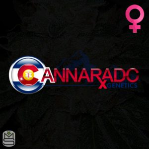Cannarado Genetics – Back To Cookies