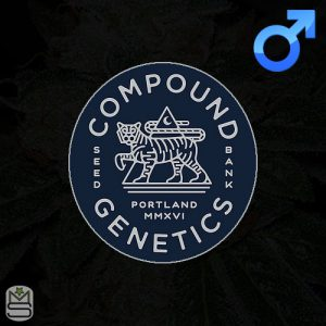 Compound Genetics – Wicked Flo