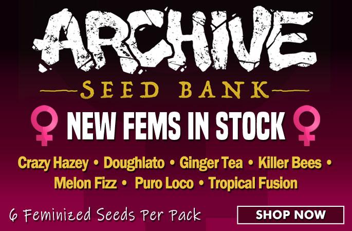 Slider - Archive Seed Bank Fems