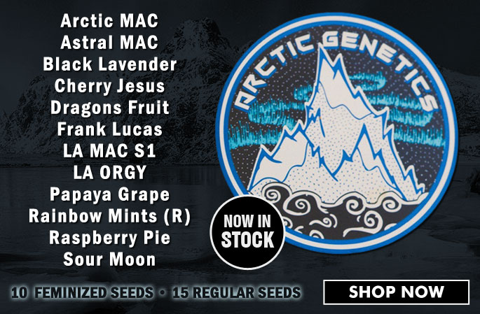 Slider - Arctic Genetics