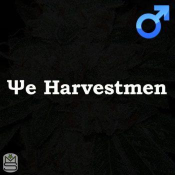 The Harvestmen – BubbaG