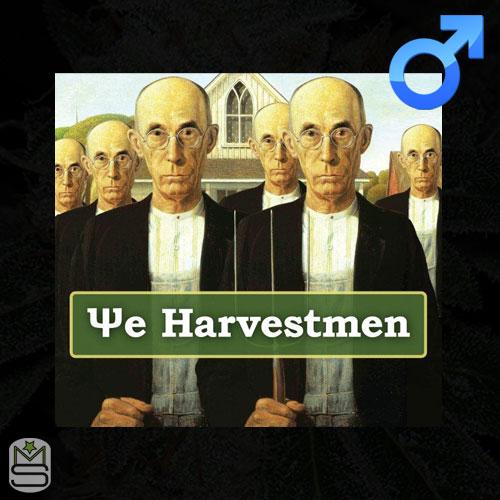 The Harvestmen - Regular