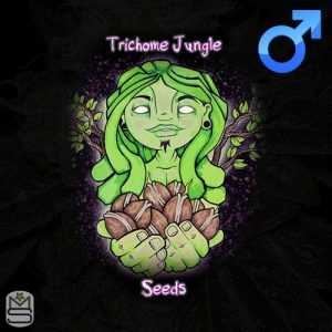 Trichome Jungle Seeds – Jungle Pie