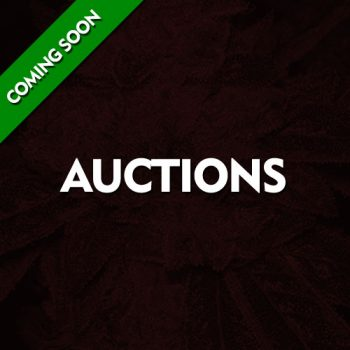 Auctions - Coming Soon