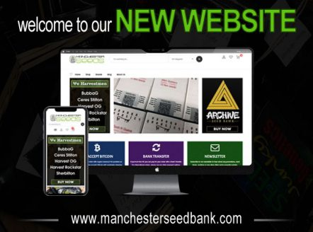 Welcome To The New Manchester Seeds Website