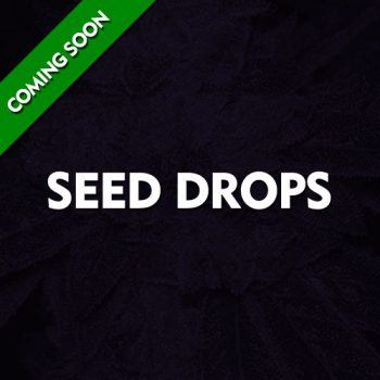 Seed Drops - Coming Soon