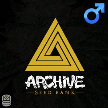 Archive Seed Bank – Purp Skurp