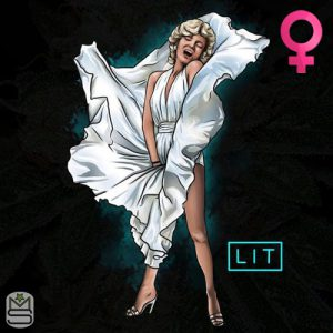 Lit Farms – Marilyn Monroe